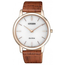 CITIZEN ECO-DRIVE EXTRA PLATE