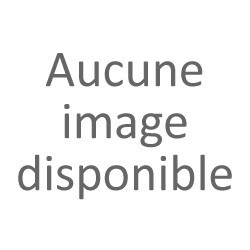 VICTIRINOX ALLIANCE QUARTZ HOMME